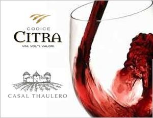 Il nostro contributo al successo del vino italiano nel mondo