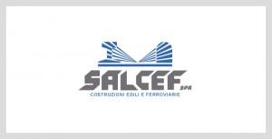 SalcefCasestudies